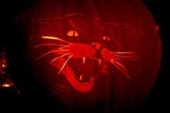 Halloween-tök-macska-ötletek-egy-csokorban-halloweenkor.hu-10