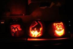 Halloween-tök-macska-ötletek-egy-csokorban-halloweenkor.hu-15