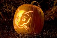 Halloween-tök-macska-ötletek-egy-csokorban-halloweenkor.hu-16