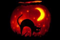 Halloween-tök-macska-ötletek-egy-csokorban-halloweenkor.hu-17