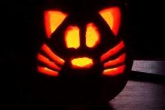 Halloween-tök-macska-ötletek-egy-csokorban-halloweenkor.hu-21