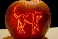 Halloween-tök-macska-ötletek-egy-csokorban-halloweenkor.hu-33