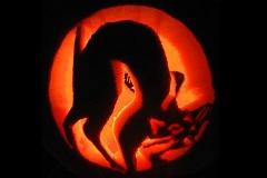 Halloween-tök-macska-ötletek-egy-csokorban-halloweenkor.hu-37
