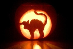 Halloween-tök-macska-ötletek-egy-csokorban-halloweenkor.hu-39