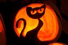 Halloween-tök-macska-ötletek-egy-csokorban-halloweenkor.hu-4