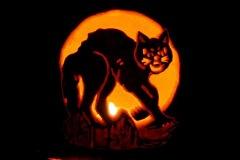 Halloween-tök-macska-ötletek-egy-csokorban-halloweenkor.hu-40