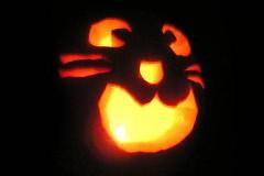 Halloween-tök-macska-ötletek-egy-csokorban-halloweenkor.hu-5
