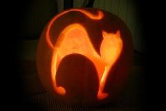 Halloween-tök-macska-ötletek-egy-csokorban-halloweenkor.hu-51