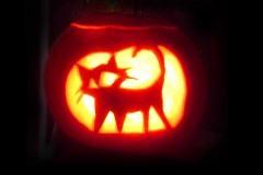 Halloween-tök-macska-ötletek-egy-csokorban-halloweenkor.hu-52