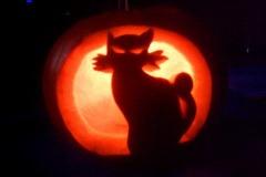 Halloween-tök-macska-ötletek-egy-csokorban-halloweenkor.hu-60