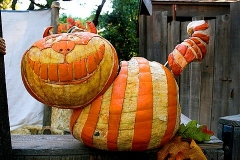 Halloween-tök-macska-ötletek-egy-csokorban-halloweenkor.hu-62