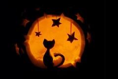 Halloween-tök-macska-ötletek-egy-csokorban-halloweenkor.hu-9